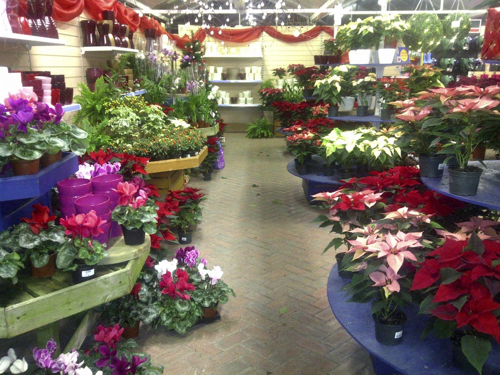 Garden Centre Horsham