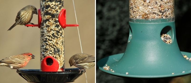 Bird food and bird feeders - Rushfields
