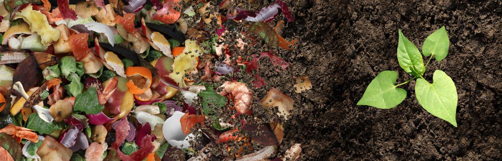 Compost - Rushfields
