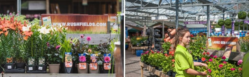 Garden Centre close to Horsham - Rushfields