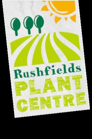 Plant Centre - Rushfields