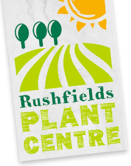 Rushfields logo
