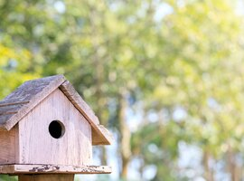 Birdhouses and bird tables | Rushfields Plant Centre